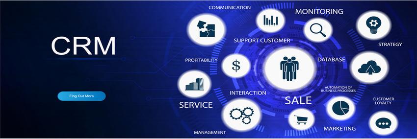 Web Development Company,Website Development Services